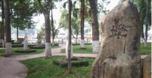 Vườn tượng